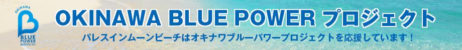 ブルーパワー